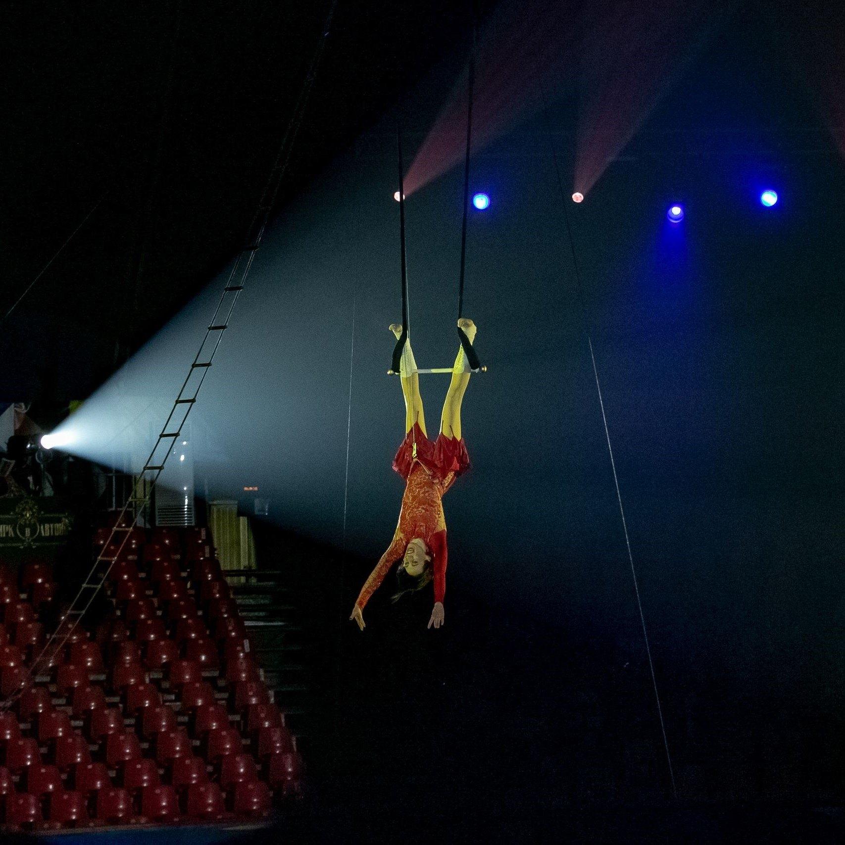 Представление «Семь чудес лета» в цирке Автово со скидкой 30%