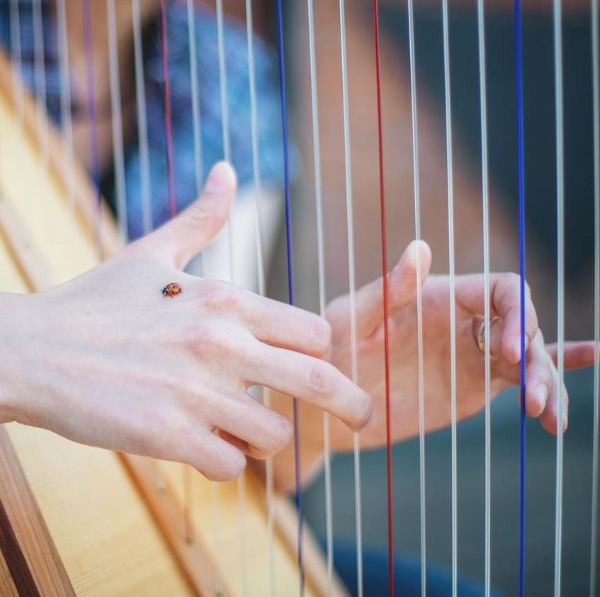 Концерт ансамбля арф «Теория струн» со скидкой 43%
