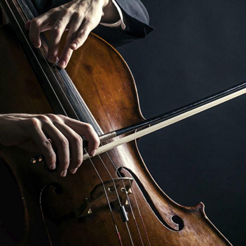 Концерт камерной музыки «Шедевры виолончельного искусства»