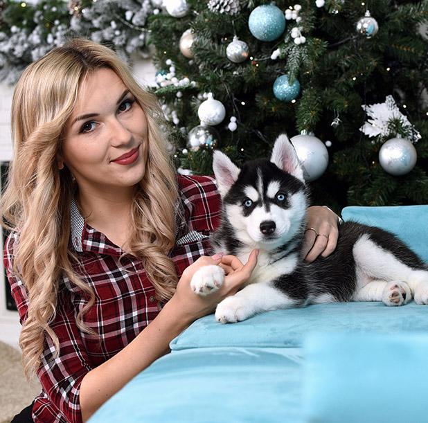 Фотосессия со щенками хаски