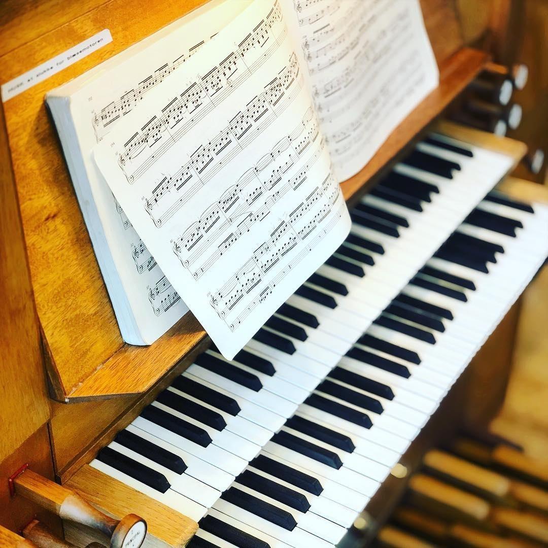 Концерт «Органные вечера в Таврическом дворце. Играет Алексей Шмитов»