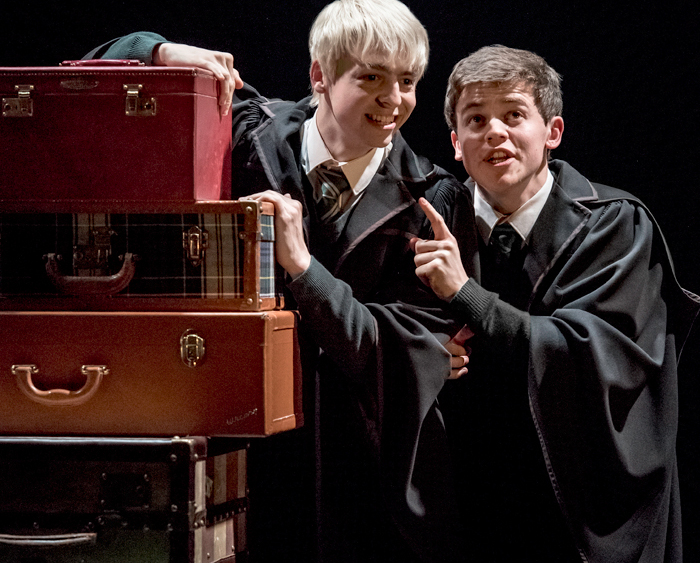 Мультимедийный спектакль «Гарри Поттер. Новые приключения»