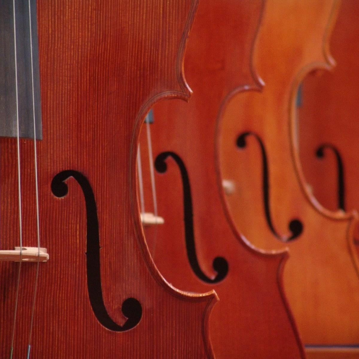 """Концерт «Шедевры классики: """"Времена года"""" А.Вивальди» со скидкой 50%"""