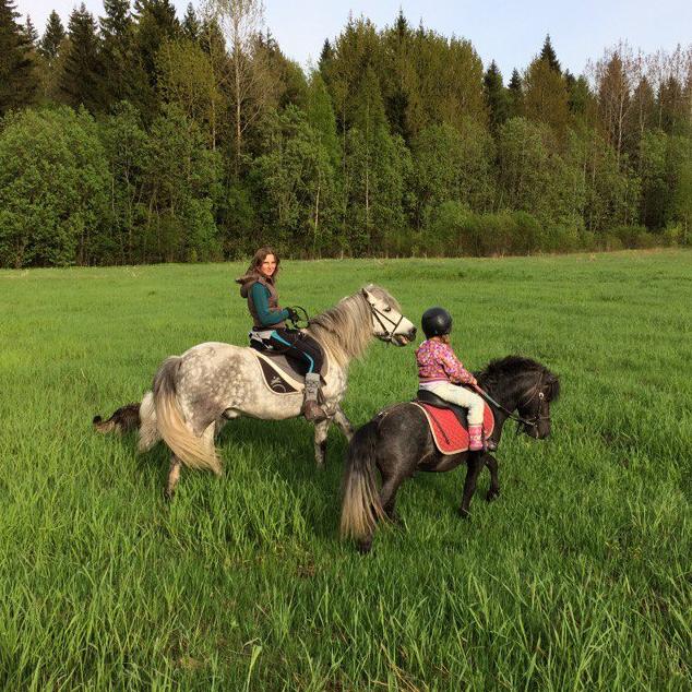 Экскурсия на ферму и катание на лошадках в деревне Бор со скидкой 50%